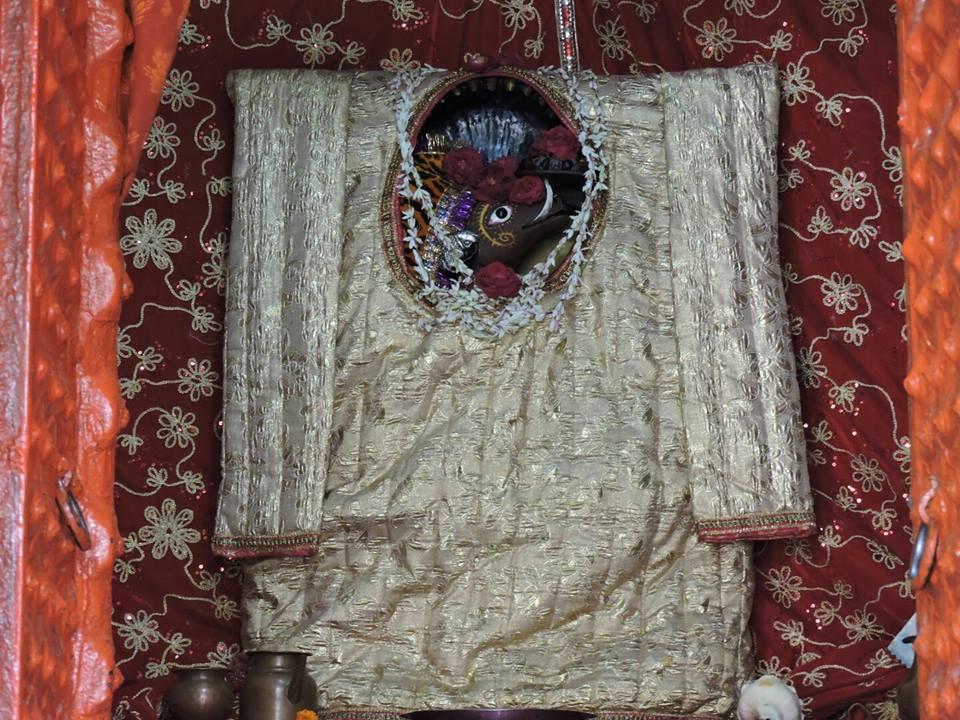 Sri Adi Varahadev of Mathura, Varaha Dwadashi, the Appearance Day of Varahadev, January 31, 2015.