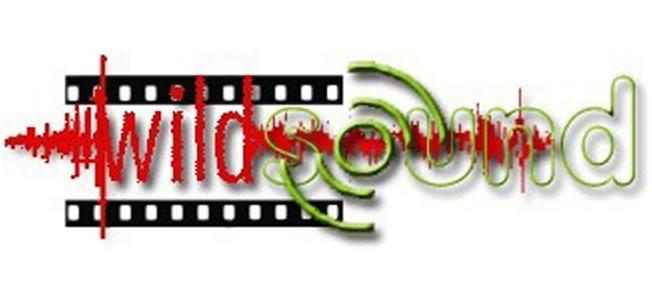 WILDsound Film Festival