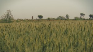 Sean Fletcher, the lead character of the film, on a lonely walk in the fields of Javat. A still from the 'Reconnection', a multi-award winning film.